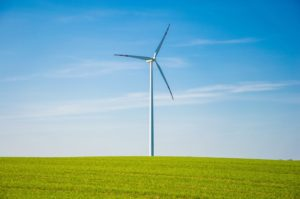 Remove bats wind turbine