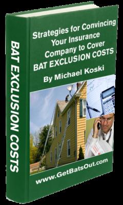 batstrategies_book