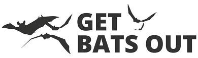 Get Bats Out