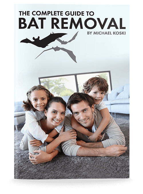 bat remediation ebook cover
