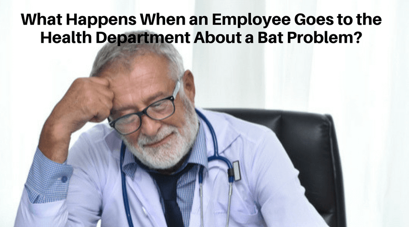 man distressed over bat problem