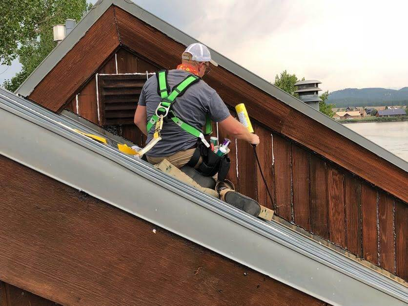 a technician sealing cracks at roofline to prevent bats from entering