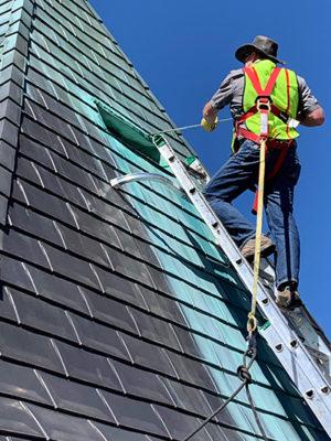 michael-ladder-safety