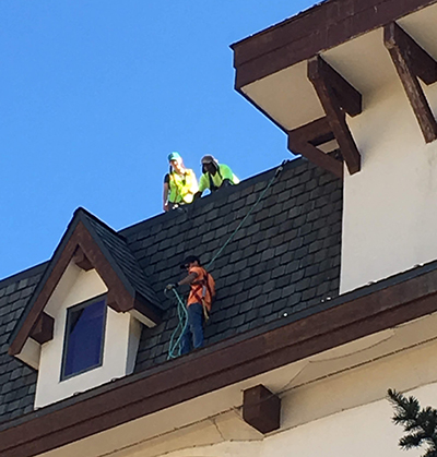 Bat Technicians on a high roof searching for bat colony entrances