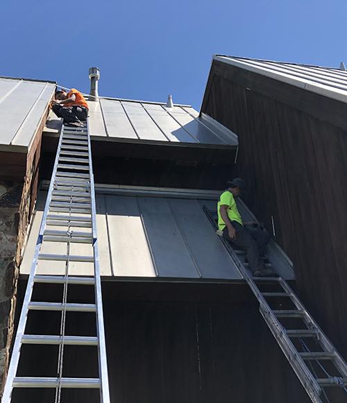 bat exclusion on a steep metal roof
