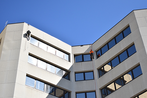 two bat removal technicians using rope access to scale a large commercial building and perform bat remediation