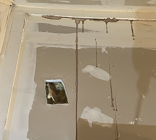 wall staining from bat urine and bat guano in a attic
